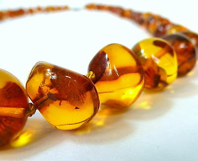 Amber Necklace Chain Amber Amber