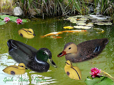 35cm Pond Duck, Floating duck for Garden pond, Decor Decoration animal