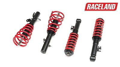 Raceland Mini R53 Coilovers 2002-2006 Suitable For Mini Cooper S Hatch And Cab