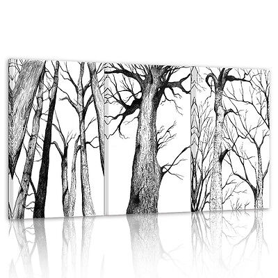 HD Canvas Prints Home Decor Wall Art Painting- Black White Trees Trunk Unframed