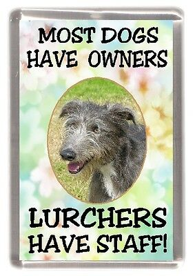 """Lurcher Dog Fridge Magnet  """"Most Dogs Have Owners Lurchers Have Staff"""""""