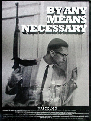Malcolm X Poster By Any Means Necessary w/ Bio African American (18x24)