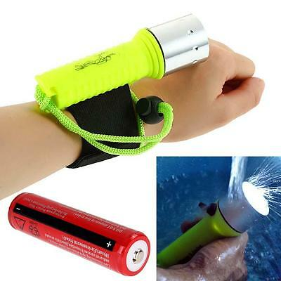3000LM CREE T6 LED Diving Flashlight Torch Waterproof Lamp 60M+ 18650 Battery GL