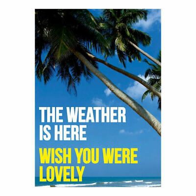 Weather Is Here Wish You Were Lovely Postcard Retro Funny Birthday Greeting Gift