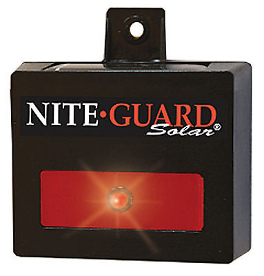 Nite Guard Solar - Dummy Security Light or Security Camera