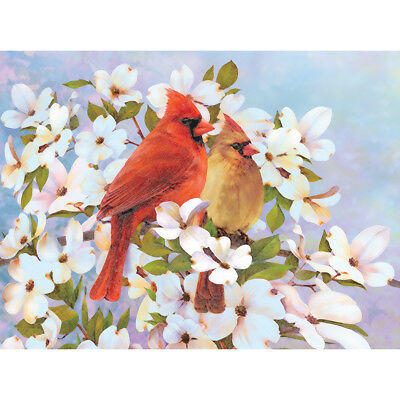 """Color Pencil By Number Kit 8.75""""X11.75"""" Cardinals CPBNK-15"""
