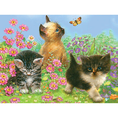 """Color Pencil By Number Kit 8.75""""X11.75"""" Kittens CPBNK-14"""