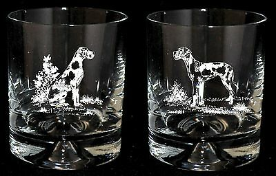 HARLEQUIN GREAT DANE *DOG GIFT* Boxed PAIR GLASS WHISKY TUMBLERS