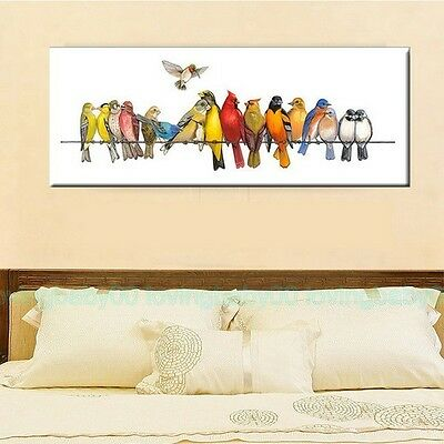 40X100X3cm Colorful Birds on Wire Canvas Prints Framed Wall Art Home Decor Gift