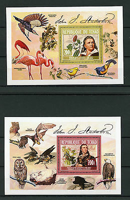 Chad Tchad 2013 MNH John James Audubon 2x Deluxe S/S Birds Prey Flowers Art Owls