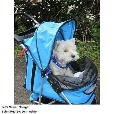 Pet Stroller by PetPlanet