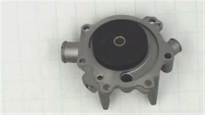 Genuine Kohler PUMP, WATER ASSEMBLY Part # [KOH][66 393 10-S]