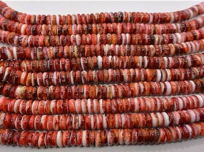 Spiny Oyster Shell Red Genuine Cortez Sea Rondelle 10 mm Beads 16 Inch Strand
