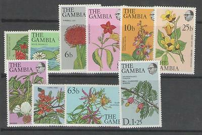 GAMBIA SG371a/81a 1979 FLOWERS & SHRUBS ON CHALKY PAPER MNH