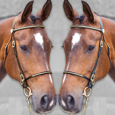 Finest Imported Leather In Hand Horse Show Bridal Bridle Solid Brass Fittings