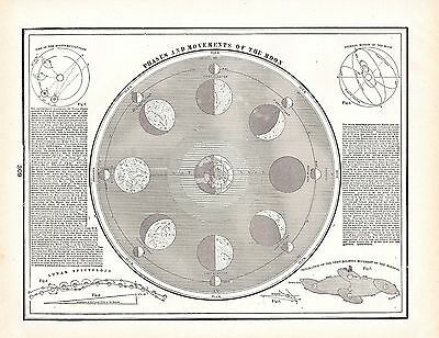 Phases and Movements of the Moon George Cram 1900