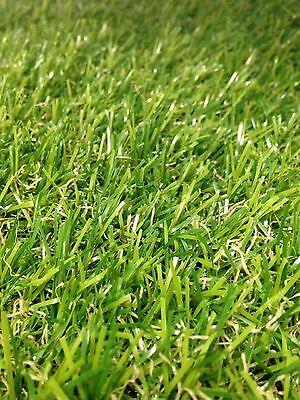12''x12''(1ft x1ft) Artificial/Synthetic Turf Fake Grass Lawn Sample Olive