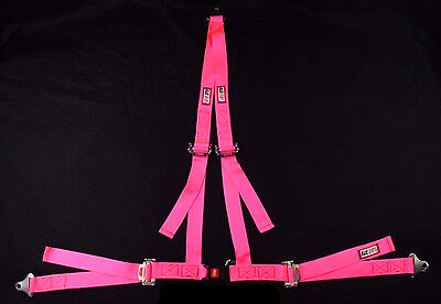 "Rjs Racing Non-Sfi Pink Off Road Buggy Harness  ""v"" Roll Bar Mount Bolt 4001710"