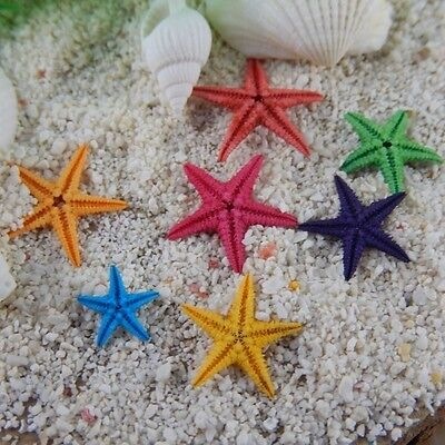 20pcs Natural Tiny Starfish Ornaments DIY Crafts Decor For Jewelry Making