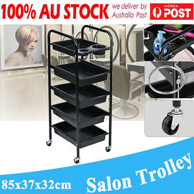 Spa Hairdresser Coloring Hair Salon Trolley Rolling Storage Cart 5 Layer Wheels