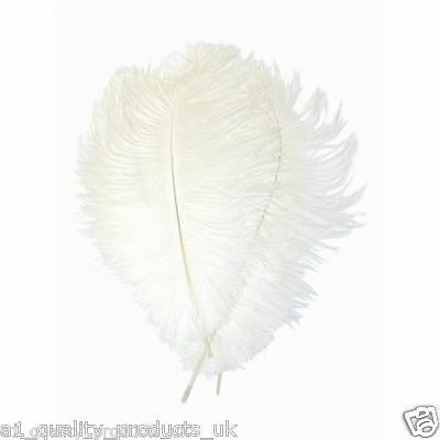 "10 x Large Ostrich Feathers, 20""-30"" White, 51-76cm Long, 100% Natural Dyed BNIB"