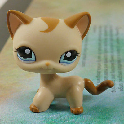 "LPS #1024 COLLECTION Action Figure Cookie Brown CAT KITTY 3"" LITTLEST PET SHOP"