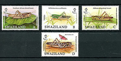 Swaziland 2011 MNH Locusts & Grasshoppers 4v Set Insects Red Locust Stamps