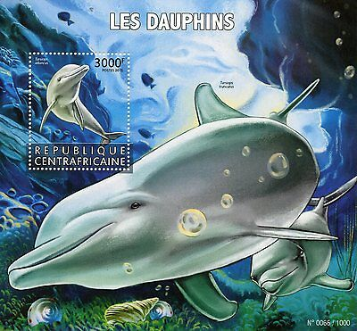 Central African Rep 2015 MNH Dolphins 1v S/S Marine Animals Bottlenose Dolphin