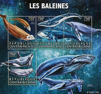 Central African Rep 2015 MNH Whales 4v M/S Marine Animals Killer Humpback Whale