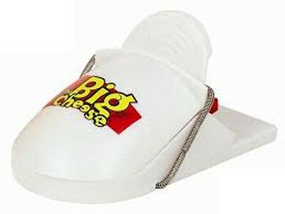 THE BIG CHEESE ReadyTo Use Quick Click Mouse Trap Twin Pack