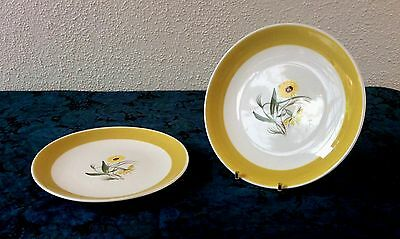Susie Cooper Marigold Hand Painted Dinner Plates x 2