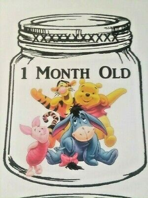 BABY Milestone 1-12 month Growth Photo Cards-Handmade--POOH AND GANG -