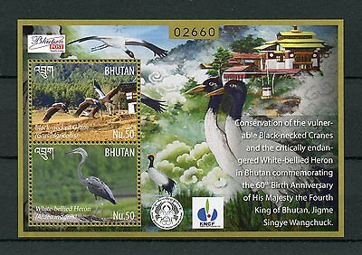 Bhutan 2015 MNH Black-Necked Cranes & White-Bellied Herons 2v S/S Birds Stamps