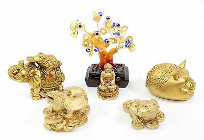 Set of 6~Fengshui Buddha Money Frog Tree Elephant Piggy Dragon Turtle Home Decor