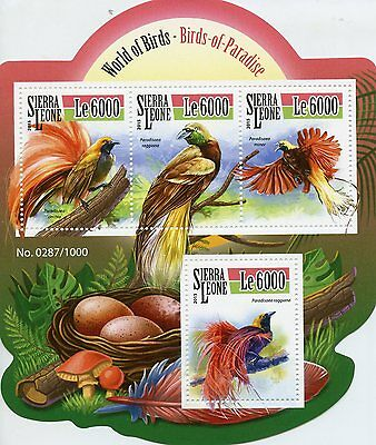 Sierra Leone 2015 MNH Birds of Paradise 4v M/S Raggiana Bird-of-Paradise Stamps