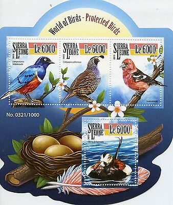 Sierra Leone 2015 MNH Protected Species 4v M/S Starling Quail Ducks Birds Stamps