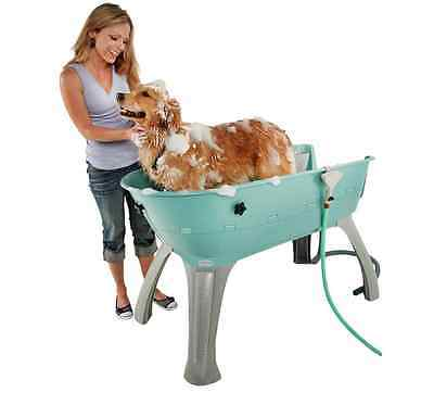 Pet Bathtub / Elevated Dog Grooming Station / Booster, Medium Size Teal