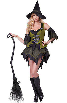 Brand New Bewitching Babe Witch Adult Costume