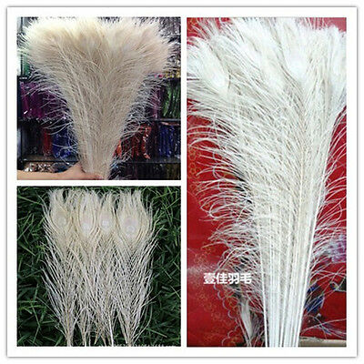 Wholesale! 10/50/100/200pcs Real white Peacock Tail Feathers about 10-32inches