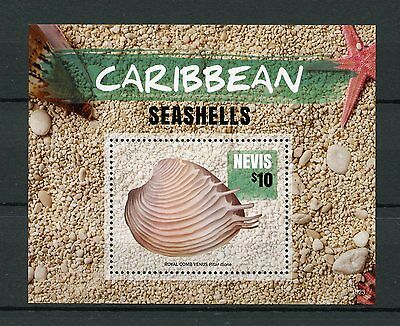 Nevis 2015 MNH Caribbean Seashells 1v S/S Royal Comb Venus Sea Shells Stamps