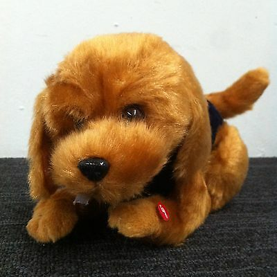 Musical soft toy ( Dog with blue clothes )