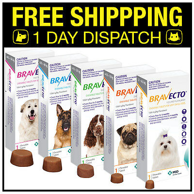 Bravecto For Dogs 1 Chew - Small Medium Large ExLarge
