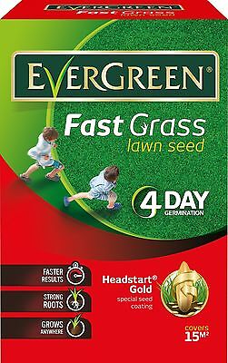 EverGreen 118014 450 g Fast Grass Lawn Seed