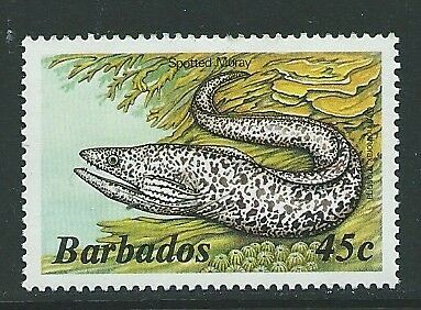 BARBADOS SG771a 1985 45c SPOTTED MORAY  MNH