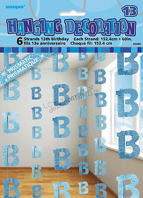 13th Birthday Party 6 Blue Hanging String Door Wall Curtains Decorations 1.5m 13
