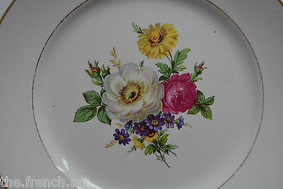Lot De 6 Assiettes Badonvilliers Decor De Fleurs