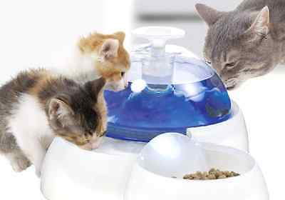 Fresh & Clear Drinking Fountain Water with Food Bowl for Cats and Puppies, New