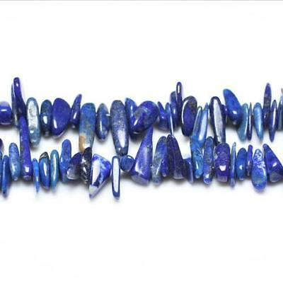 Strand Of 115+ Blue Lapis Lazuli Approx 6 x 18mm Long Tooth Chip Beads GS3259