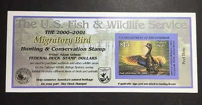 #RW67A 2000 - 2001 - US Federal Duck Stamp - Post Office FRESH
