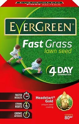EverGreen Fast Grass Lawn Seed Covers 80m2
